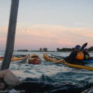 Photo Friday: Evening rescue session